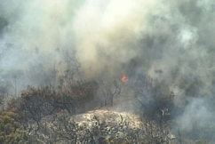 Fraser Coast mayor welcomes review into bushfire ravaging the island