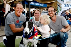 Why Todd McKenney went to the dogs