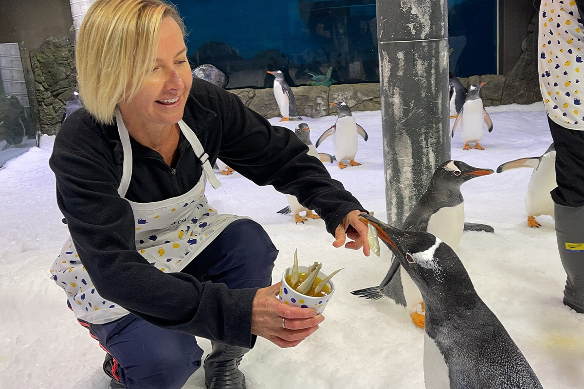 Article image for Deborah Knight fishes for friends at adorable penguin tea party