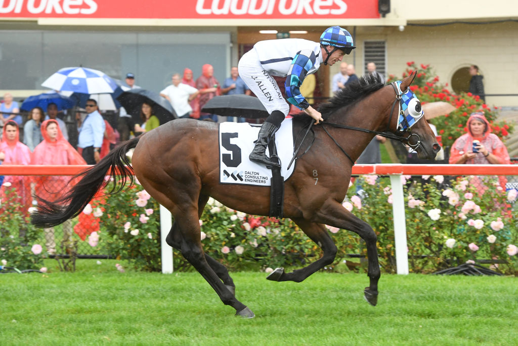 Article image for Queensland Health strands racehorses in Melbourne for COVID risk